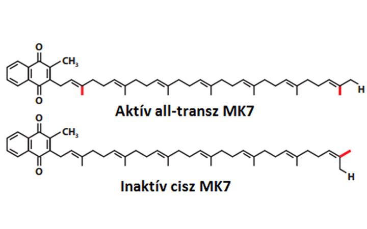 K2-vitamin (MK7) bacillus subtilis natto fermentációjából, >99% all-transz K-vitamin tartalommal!