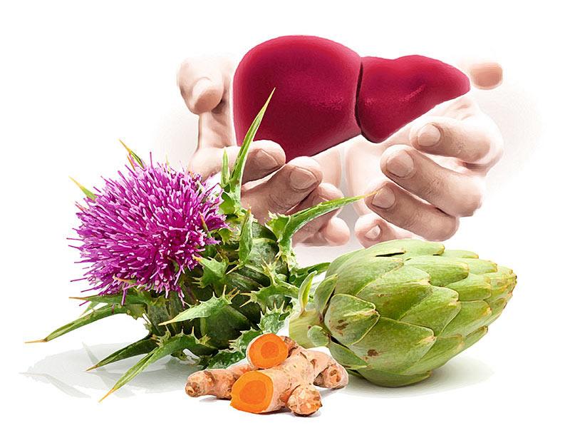 Natur Tanya® Hepa Detox májvédő koncentrátum