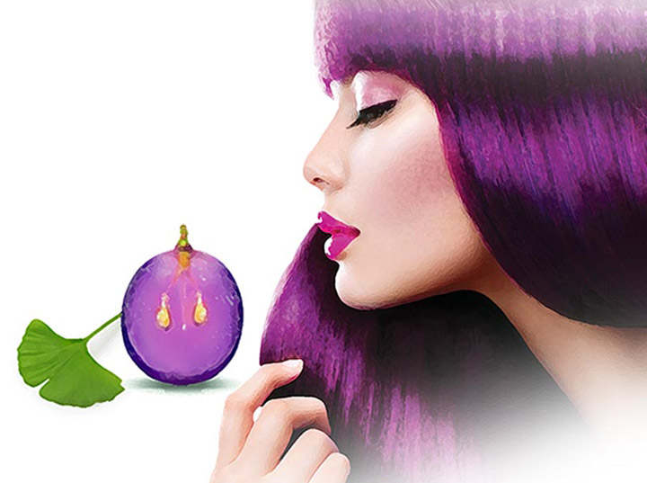 A szőlőmag és a Ginkgo biloba jótékony bioaktív komponensei.